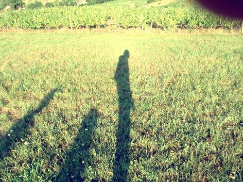http://autr3.part.cowblog.fr/images/3/P7260038.jpg