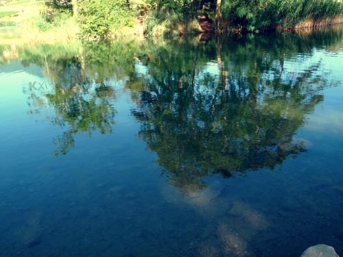 http://autr3.part.cowblog.fr/images/3/P7260118-copie-1.jpg